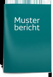 musterbericht_brochure